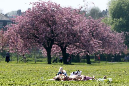 Temperatures are set to soar in Harrogate this week.