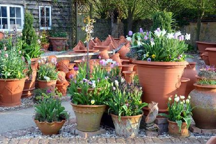 Use terracotta pots