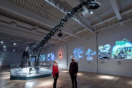 Dippy the Diplodocus at the Great North Museum