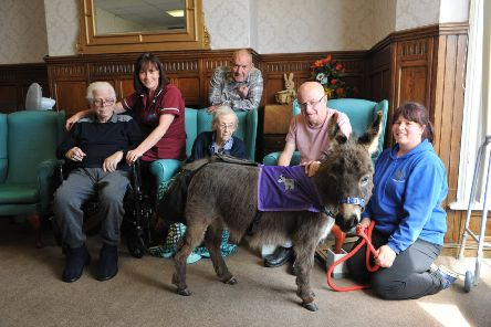 Seaton Hall Residential Home residents enjoy a visit from Teddy the donkey.