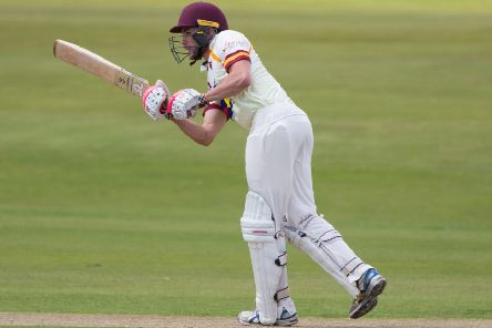 Callum Cook was among the runs last weekend