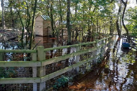 Milnthorpe's Wildlife Oasis has been left under two feet of water