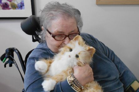 Laurel Bank Care Home resident with Toffee Apple, the Robo-Cat