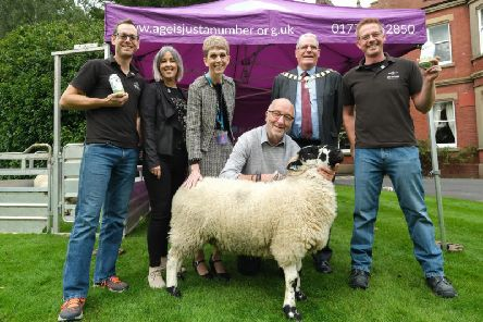 The launch of What The Flock loneliness campaign
