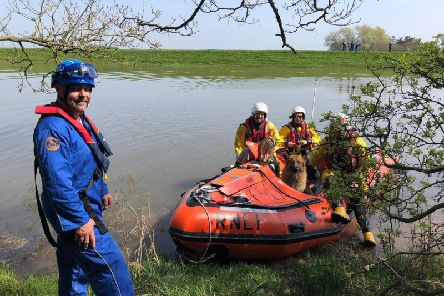 A successful rescue of woman and dog