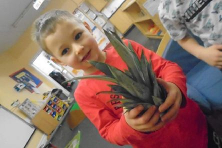 Children at Stepping Stones nursery have been encouraged to try the different fruits at snack time and after a main course of their meals.