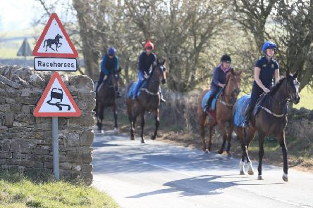 Racehorses at the gallops in Middleham. Trainers are being advised to continue gallops exercise, and adhere strictly to social-distancing requirements, following Prime Minister Boris Johnson's announcement of new measures to combat the spread of coronavirus. PA Photo.