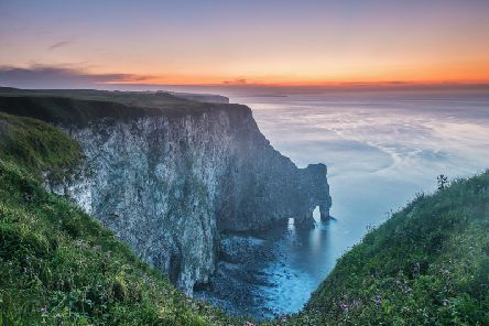 RSPB Bempton Cliffs celebrates its 50th anniversary this year