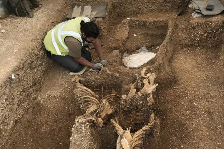 The incredible discovery at The Mile site in Pocklington.