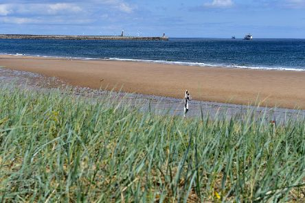 Sandhaven Beach, South Shields
