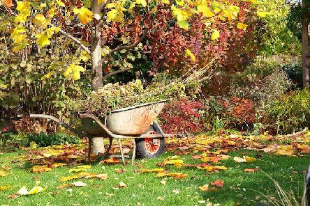 Top tips for keeping you garden looking good whatever the season