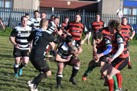 Houghton RFC (black/white) v  Sedgefield RFC (red/black) at Dairy Lane, Houghton, on Saturday.