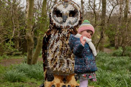 A youngster with the Lego owl at WWT Washington. Picture by Harley Todd / WWT