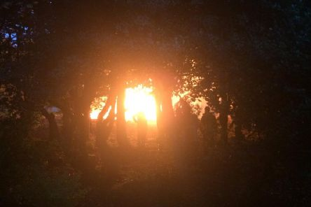 A fire off Ballam Road in Lytham spread to trees (Picture: Lytham Fire Station)