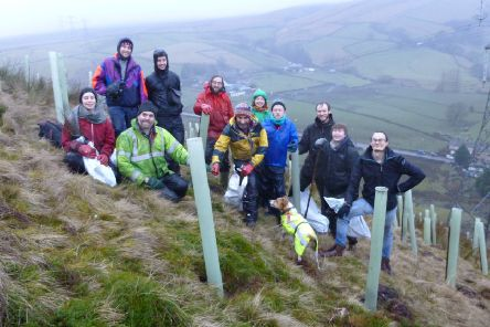Huge benefits: Members of the Treesponsibility group have planted 250,000 trees across Calderdale.