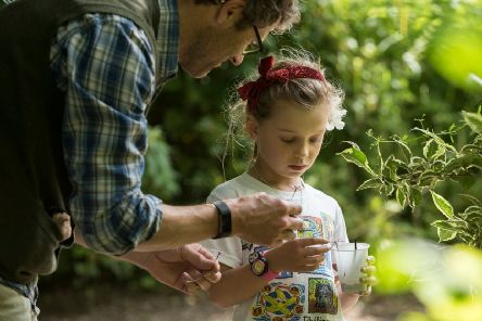 Wildlife detectives, one of a number of summer activities for families visiting the Nidderdale AONB, Pateley Bridge