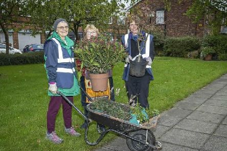 Some of the green-fingered participants