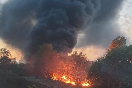 Huge plumes of black smoke visible from a tyre fire on Maple Avenue in May