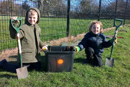 Serlby Park Academy pupils have planted more than 200 trees