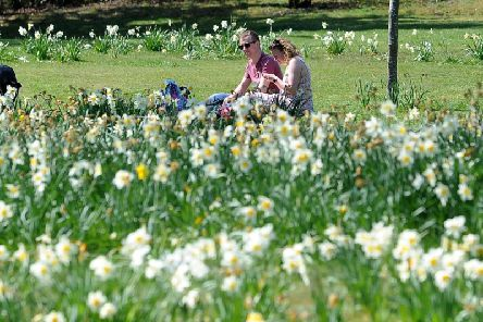 People have been enjoying the spring sunshine at Temple Newsam in Leeds