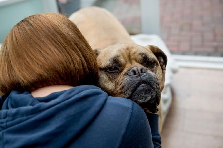 Having a dog can stop a domestic abuse victim fleeing