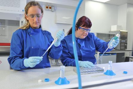 Analytical scientists in the labs at Tissue Regenix. Picture: Tony Johnson.