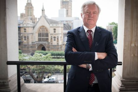 Haltemprice and Howden MP David Davis is the former Brexit Secretary.