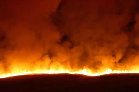 A fire on Saddleworth Moor.
