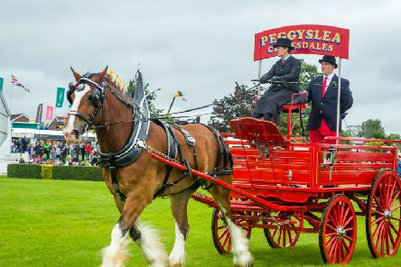 The 162nd edition of the Great Yorkshire Show will take place in Harrogate in July 2020, celebrating the very best of farming, food and the countryside.