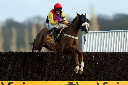 NO GO: Native River and jockey Jonjo O'Neill Jr pictured on their way to winning the Betfair Denman Chase at Newbury earlier this month. Picture: Steven Paston/PA