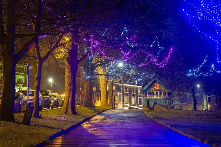 String lights adorn the trees by The Stray on Montpellier Hill in Harrogate.  Technical details, shot on a Nikon D3s, 28-70mm lens with an exposure of  10 seconds @ f16, 100ISO.  Picture Tony Johnson