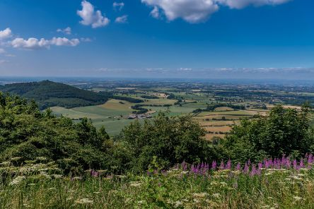 The view from Sutton Bank where the North York Moors National Park Authority wants to create a new 2.8km cycling trail. 'Picture by James Hardisty.