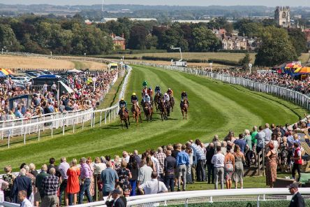 A typical raceday scene at Beverley with the town's Minster in the background.