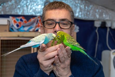 Khaled's budgies helped to provide comfort as he settled in his home in Barnsley.