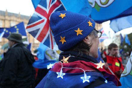 An anti-Brexit supporter outside the Houses of Parliament.
