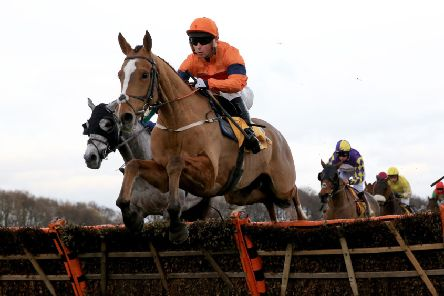 Sam Spinner ridden by Joe Colliver will run in the Ryanair Stayers' Hurdle next month.