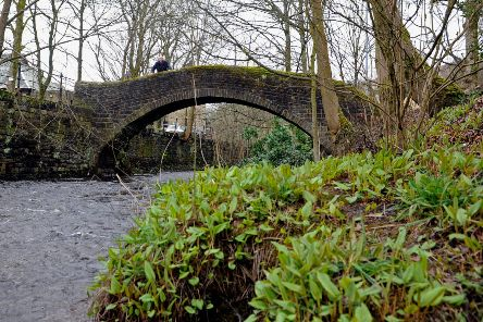 A passer-by looks from the old packhorse bridge at the River Colne which flows through Marsden near Huddersfield. Picture: Tony Johnson.