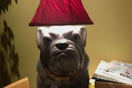 Julian Norton is the proud owner of a new lamp.