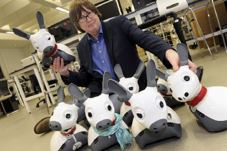 Professor Tony Prescott is leading the Sheffield element of the robotics project.
