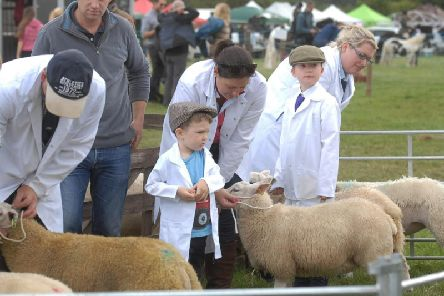 Young sheep farmers preparing for judging at Weeton Show in 2017. Picture by  Adrian Murray.