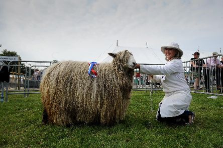 Louise Fairburn with the Lincoln Longwool which won the Supreme Champion in the Rare Breed Group at Driffield Show. Picture by Simon Hulme.
