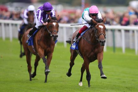 Enable and Frankie Dettori (right) surge clear of Magical in the Yorkshire Oaks.