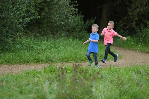 South Ribble's first Green Link pathway sparks concerns over