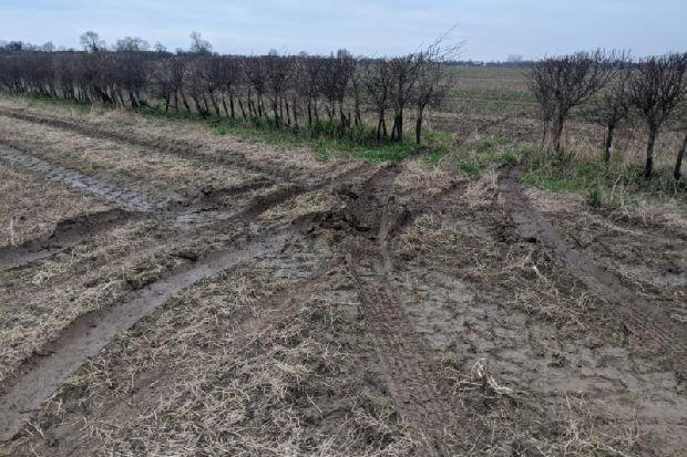 Five arrested after farmer catches suspected poachers in North Yorkshire fields