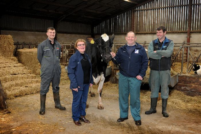 Robert and Elaine Butterfield with Chris Chappell, left and James Atkinson right and Jazz, the prize winning Holstein cow at Linghaw Farm in High Bentham. The Yorkshire Holstein Club have just had its 100th anniversary. Credit: Tony Johnson