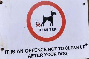 Anti-social fly-tippers and dog foulers will face tougher punishments