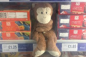 Mika the monkey in the chiller cabinet at  the Central England Co-op store in Strutt Street, Belper.