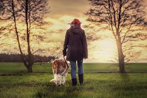 A man sexually exposed himself to a woman walking her dog in a Derbyshire park. Stock image.
