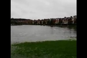 Park View playing field is flooded. Picture and video by Neil Redman