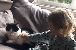 Steves daughter Mary with Percy, the family cat